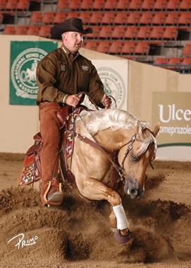 2012 NRCHA Snaffle Bit Futurity Open Champion CD Diamond, owned by NRCHA Breeder Sponsor San Juan Ranch, a division of Santa Cruz Animal Health, is one of the outstanding sires available through the 2013 Stallion Auction.