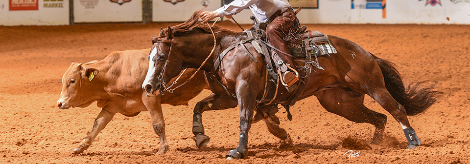 Sponsor Showcase | National Reined Cow Horse Association